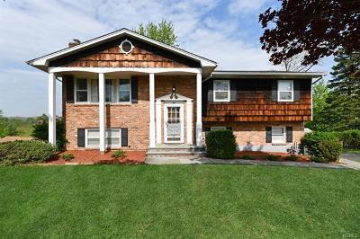 Single Family Home For Sale: 10 Skyline Drive