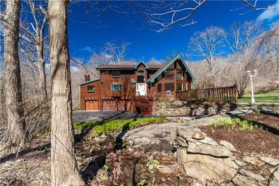 Westchester County Single Family Home For Sale: 66 Smith Ridge Road