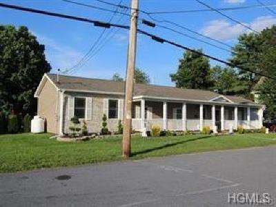 Orange County, Sullivan County, Ulster County Rental For Rent: 7 Sanford Avenue