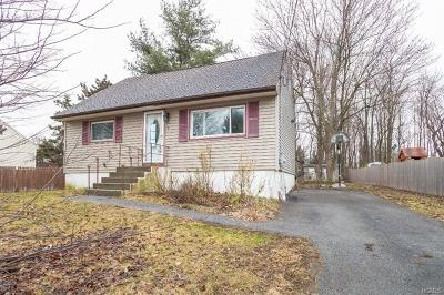 Chester Single Family Home For Sale: 19 Carpenter Road