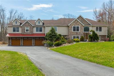 Poughkeepsie Single Family Home For Sale: 115 King Drive