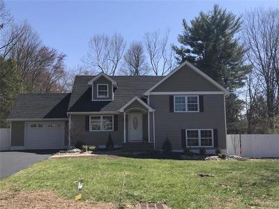 Blauvelt Single Family Home For Sale: 381 Blauvelt Road