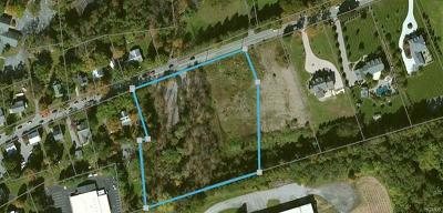 Orange County, Sullivan County, Ulster County Residential Lots & Land For Sale: 44 Colonial Avenue