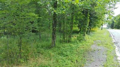 Orange County, Sullivan County, Ulster County Residential Lots & Land For Sale: Ulster Heights Road