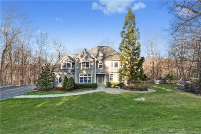 Westchester County Single Family Home For Sale: 33 Brundige Drive