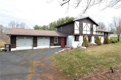 Fishkill Single Family Home For Sale: 100 Watch Hill Drive