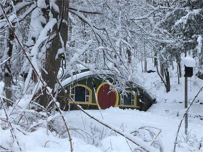 Pawling NY Single Family Home Hobbit House: $795,000