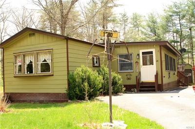 Westbrookville Single Family Home For Sale: 1580 Us Route 209