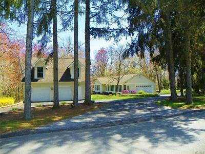 Fishkill Single Family Home For Sale: 117 Lyndon Road