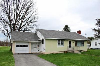 Kerhonkson Single Family Home For Sale: 19 Spruce Street