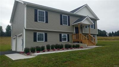 Goshen Single Family Home For Sale: 339 Arcadia Road