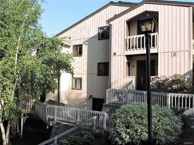 Westchester County Condo/Townhouse For Sale: 25 Overlook