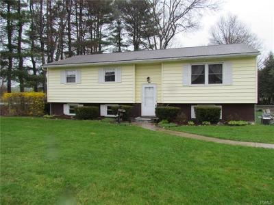 Staatsburg Single Family Home For Sale: 169 South Cross Road