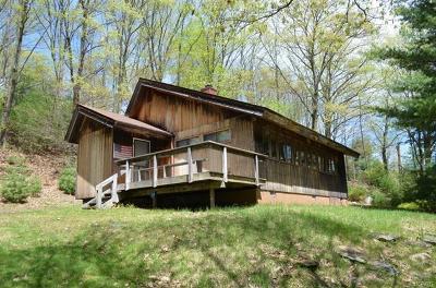 Wurtsboro Single Family Home For Sale: 261 Aldrich Road