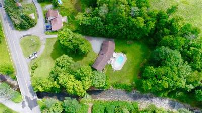 Livingston Manor Single Family Home For Sale: 15 Old County Route 149