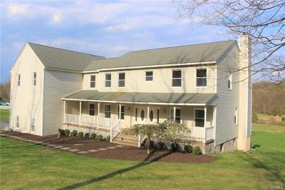 Warwick Single Family Home For Sale: 624 State Route 94