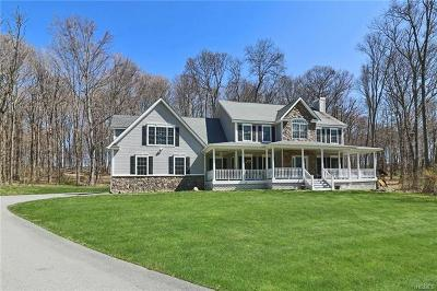 Hopewell Junction Single Family Home For Sale: 315 Augusta Drive