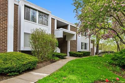 Hartsdale Condo/Townhouse For Sale: 1015 Colony Drive