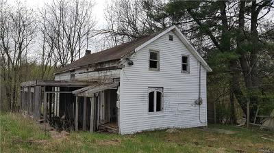Bloomingburg Single Family Home For Sale: 226 Petticoat Lane
