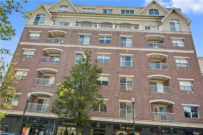 New Rochelle Condo/Townhouse For Sale: 543 Main Street #201