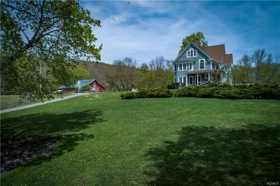 pawling Single Family Home For Sale: 162 Old Pawling Road