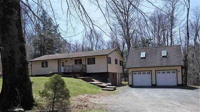 Monticello Single Family Home For Sale: 167 Hamilton Road