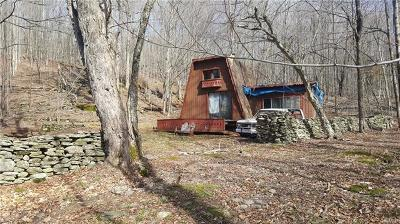 Livingston Manor Single Family Home For Sale: 122 Tuttle Hill Road