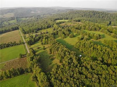 Residential Lots & Land For Sale: 123 William Killie Road