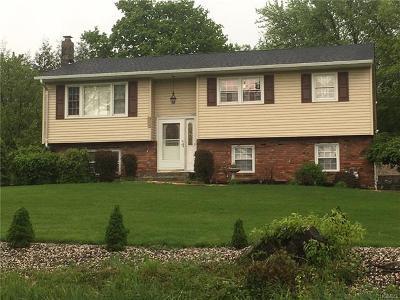 Goshen Single Family Home For Sale: 355 Reservoir Road