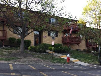 Condo/Townhouse For Sale: 346 Richard Court