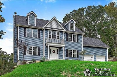 Chappaqua Single Family Home For Sale: 6 Point Place