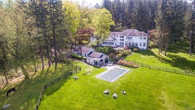 North Salem Single Family Home For Sale: 260 Hardscrabble Road