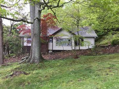 Brewster Single Family Home For Sale: 2567 Carmel Avenue