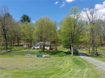 Wurtsboro Single Family Home For Sale: 3469 State Route 209