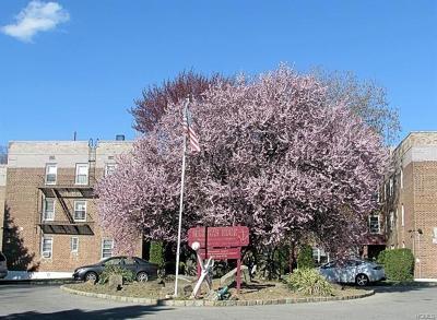 New Rochelle Co-Operative For Sale: 30 Davenport Avenue #1K