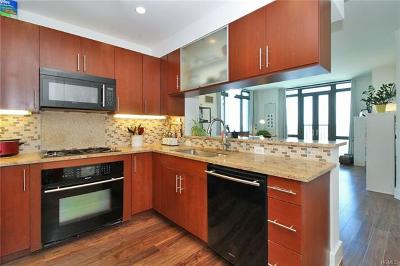 New Rochelle Condo/Townhouse For Sale: 175 Huguenot Street #1707