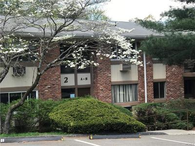 Westchester County Condo/Townhouse For Sale: 2 Woods End Circle #D