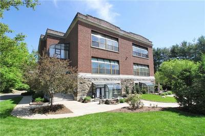 Cortlandt Manor, Pleasantville Condo/Townhouse For Sale: 33 Roselle Avenue #C