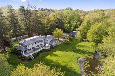 Mount Kisco Single Family Home For Sale: 233 McLain Street