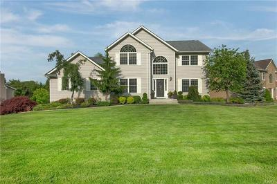 Chester Single Family Home For Sale: 133 Creamery Pond Road