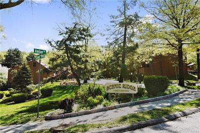 Croton-On-Hudson Single Family Home For Sale: 39 Amber Drive