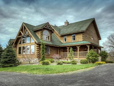 Orange County Single Family Home For Sale: 53 Vista Lane