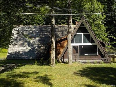 Sparrowbush Single Family Home For Sale: 3 Forest Park Place