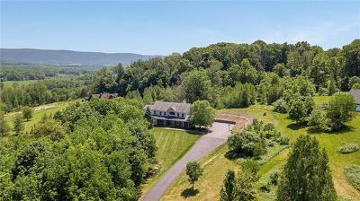 Orange County Single Family Home For Sale: 3 Eaglewood Vista Lane