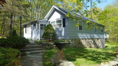Stormville Single Family Home For Sale: 85 White Pond Road