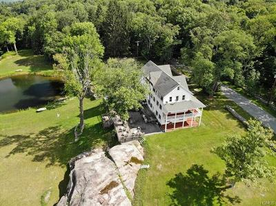 Cochecton Single Family Home For Sale: 205 Mueller Road