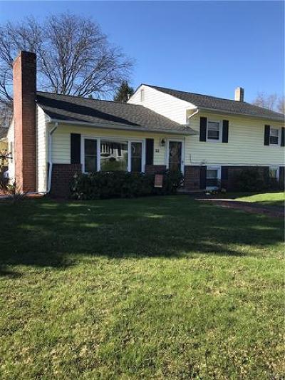 New Windsor Single Family Home For Sale: 22 Hudson Drive