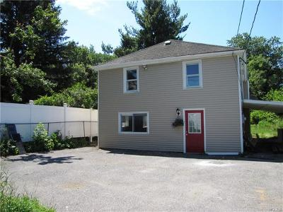 Rock Tavern Single Family Home For Sale: 493 State Route 17k