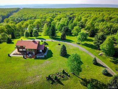 Orange County Single Family Home For Sale: 83 Vista Lane