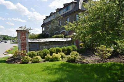 Westchester County Condo/Townhouse For Sale: 11 River Street #309